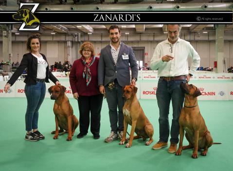 ENCI Winner Verona 2019
