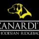 Cucciolata Zanardi's Rhodesian Ridgeback